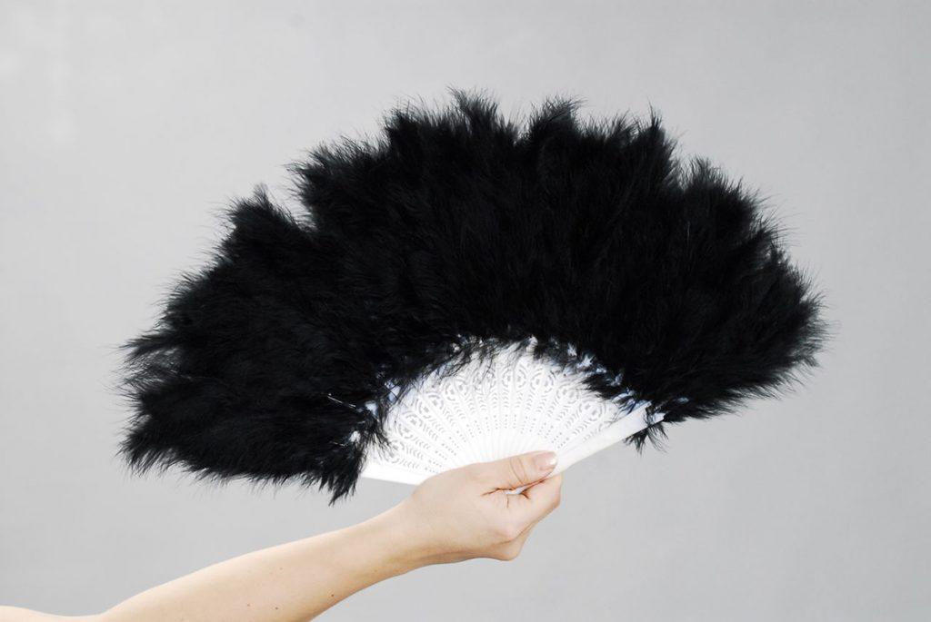 Черный веер из перьев