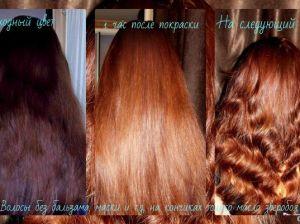 Хна и басма для волос: пропорции, цвета и правила окрашивания