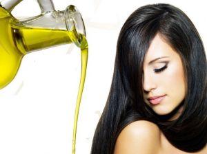 Оливковое масло: нюансы оздоровление волос и естественного ухода