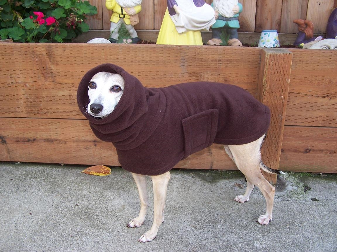 Зимний комбинезон для собак с открытыми лапами
