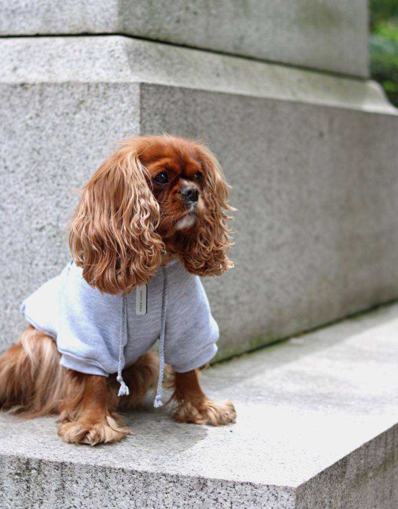 Зимний комбинезон кофта для собак