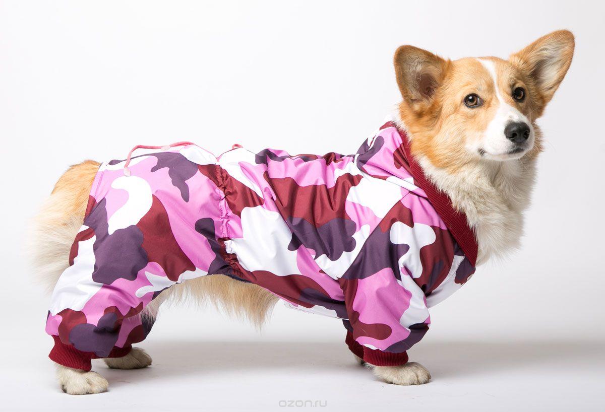 Зимний комбинезон для собак коротколапых