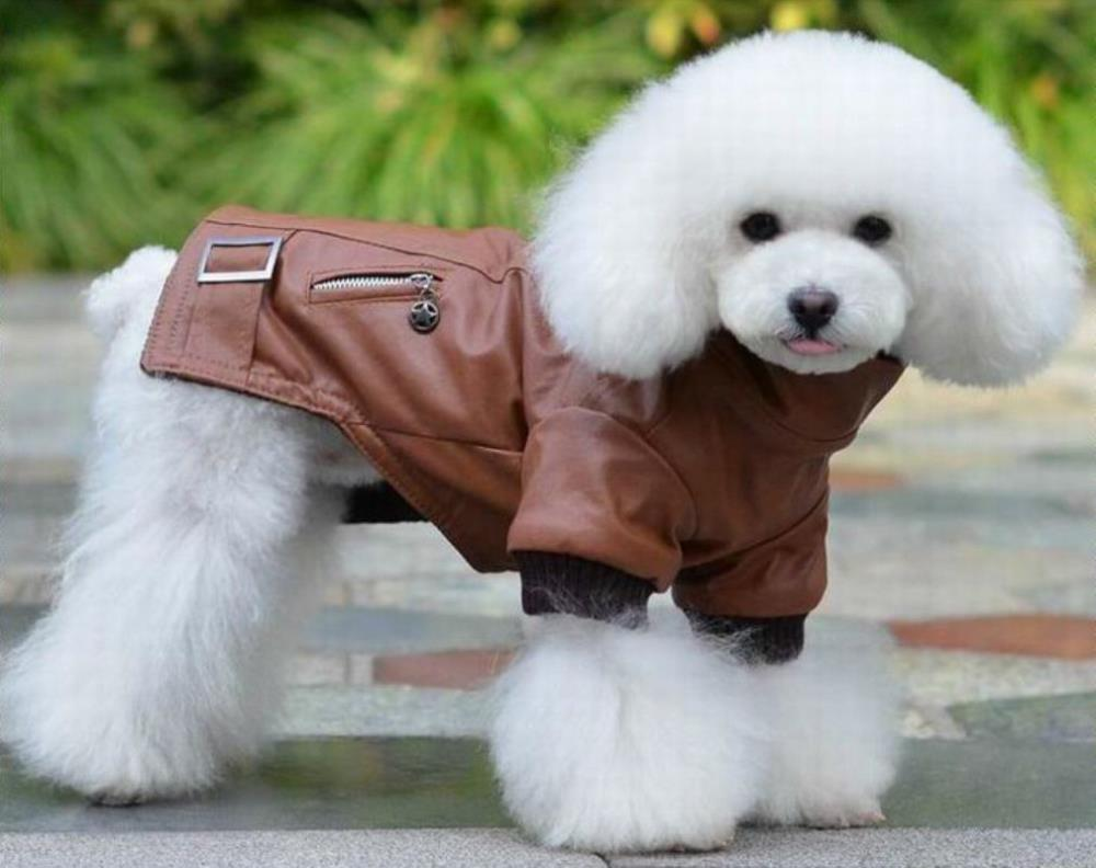 Зимний комбинезон для собак кожаный