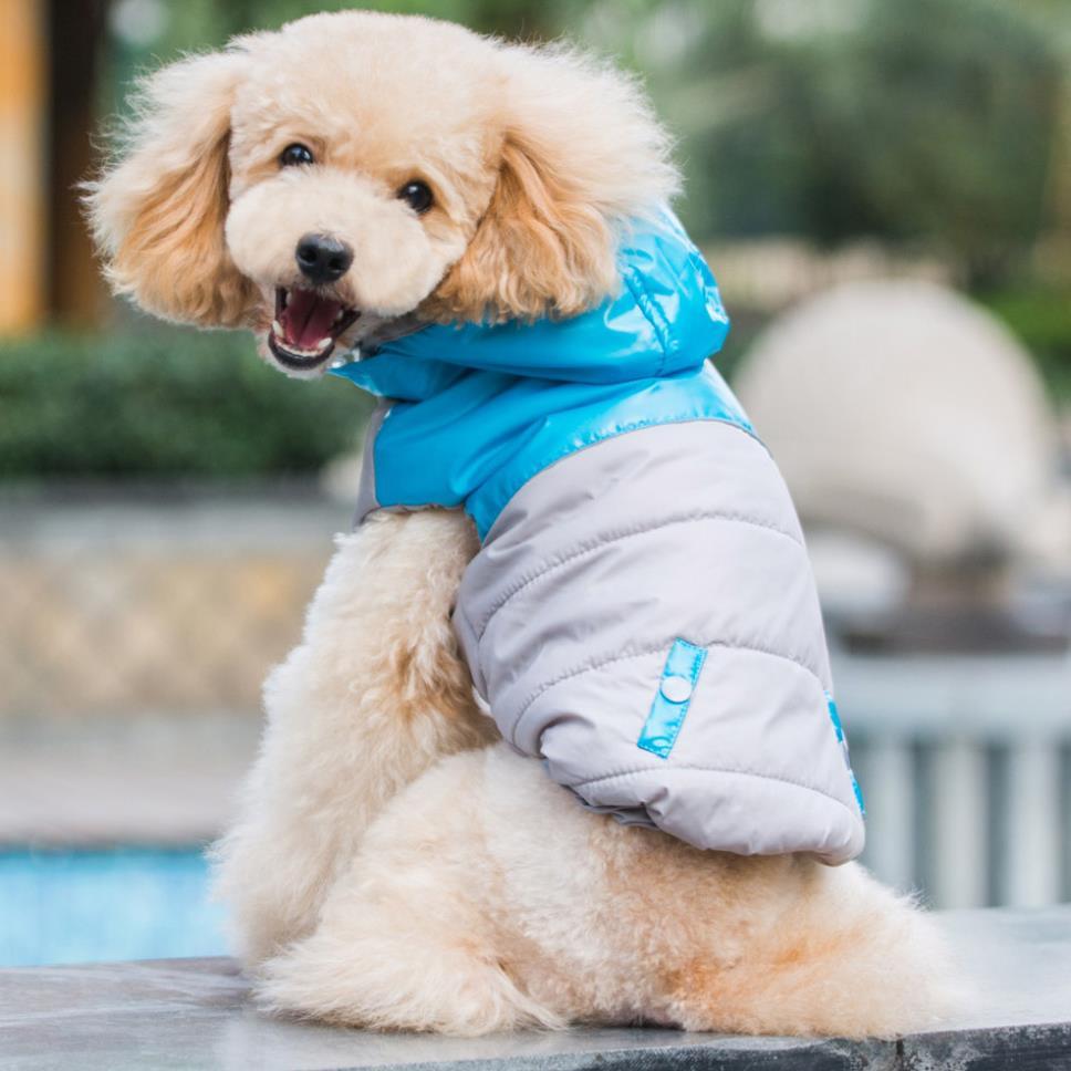 Зимний комбинезон пуховый для собак