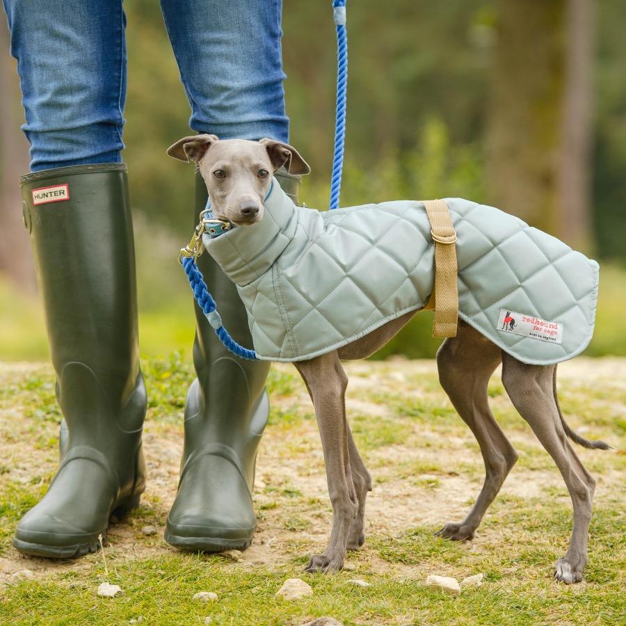 Зимний комбинезон для собак стеганый