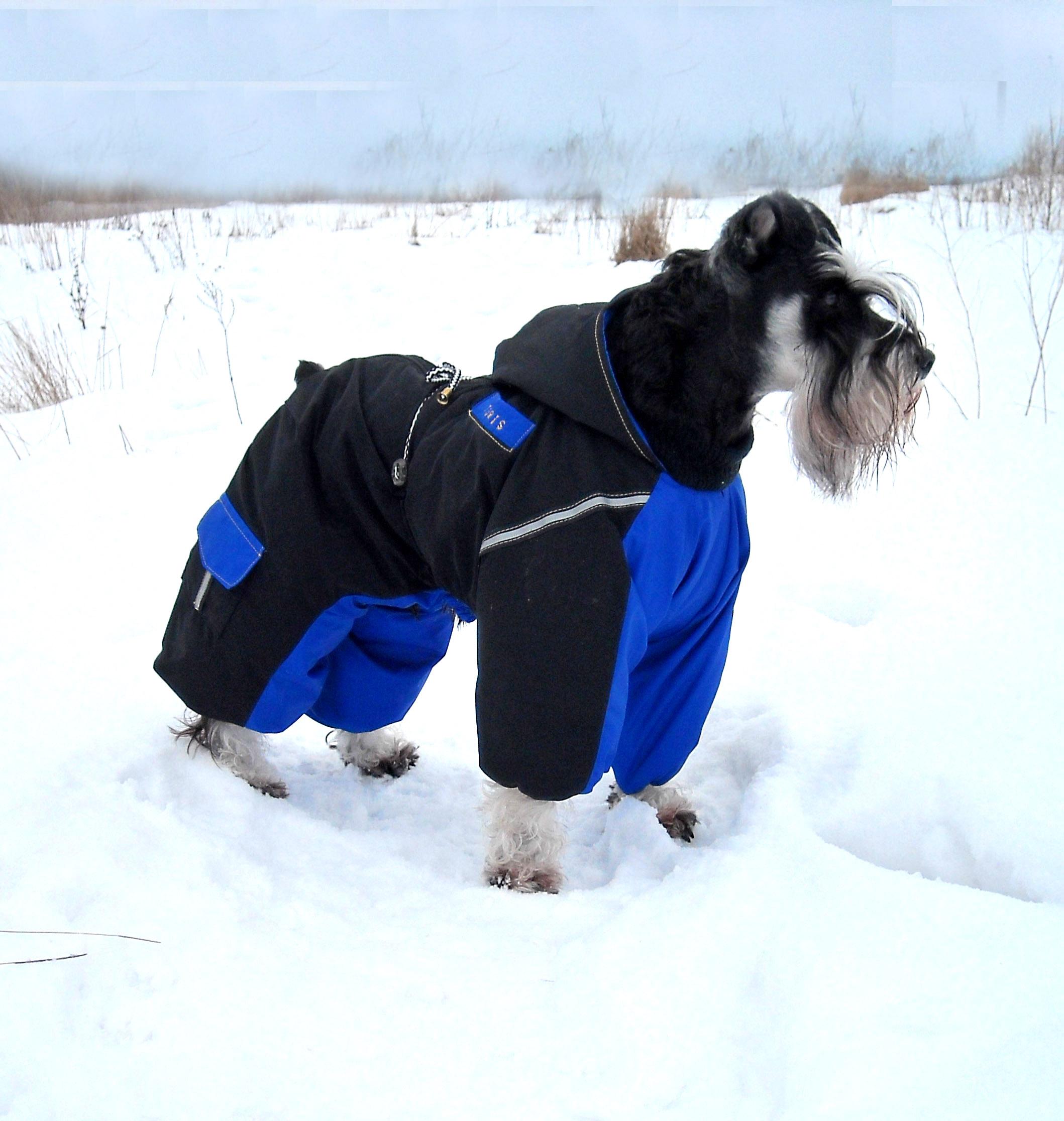 Зимний утепленный комбинезон для собак