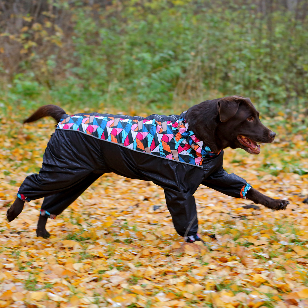 Зимний комбинезон для собак с узором