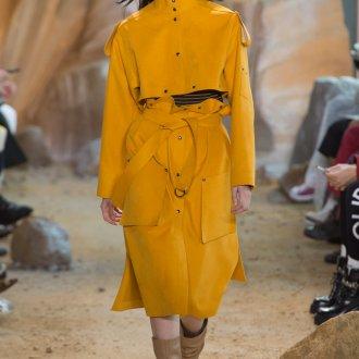 Модное желтое пальто 2018