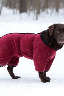 Зимний комбинезон для собак бордовый