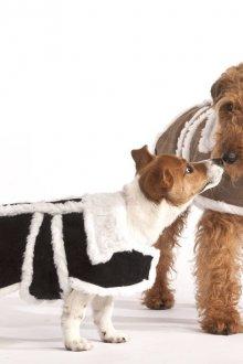 Зимний комбинезон из кусочков для собак