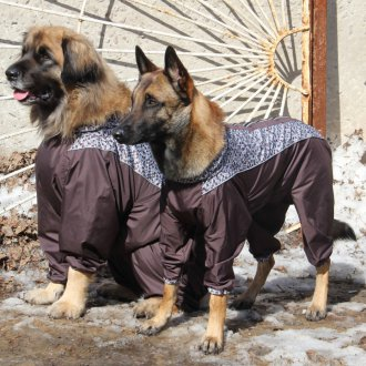 Зимний комбинезон для собак парный