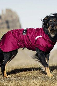 Зимний комбинезон для собак ветрозащитный
