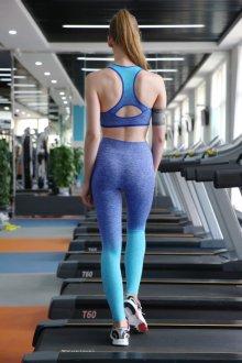 Спортивные легинсы голубые