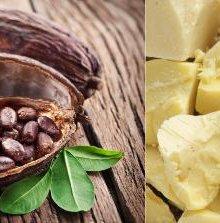 Особенности масла какао