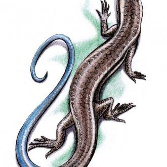 Женская татуировка ящерица