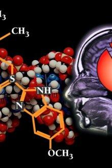 Фармакодинамика и фармакокинетика